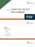 El Iter Criminis