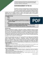 delirium_2011.pdf