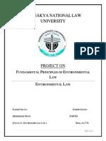 Fundamental Principles of Env Law