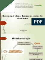 Microtubulos