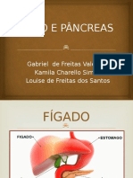 FÍGADO E PÂNCREAS.pptx