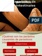 Diagnósticos de Parásitos Intestinales2