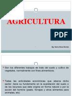 AGRICULTURA-7-8