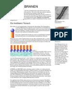Biomembranen - Versuche
