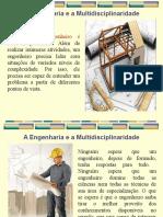 03- Engenharia e Multidisciplinariedade