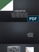 Conjuntiva Aehf Conjuntivits-querato, Fiebre