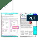 Rapido Training Learner Spring Newsletter Part 1- 2010