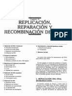 Replicacion.pdf