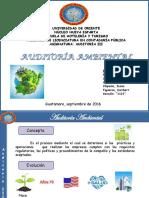 Auditoria Ambiental PDF