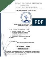Informe Finos - Absorción y Peso Específico