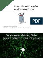Aula 3 Transmissa o de Informac a o Dentro Dos Neuro Nios Slides