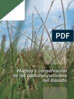 20_pasturas_de_basalto (1)