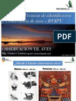 Observación Aves RVSPV