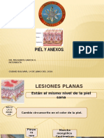 Clase de Piél Dra. Milagros Garcia