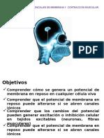Apo-5.pptx