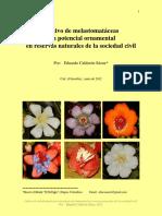 Melastomatáceas Con Potencial Ornamental en Reservas Naturales
