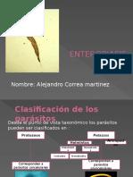 enterobiasis (1).pptx