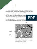 Rioga Dirgantara (134140013)_Matriks Tanah Dan Pori-pori Tanah