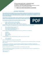 NIVELES DE LA ESCRITURA.docx