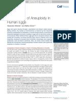 Mechanisms of Aneuploidy in Human Eggs