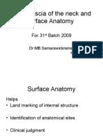 Scalp Fascia Surface Anatomy
