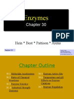 4. Ch30 _enzymes
