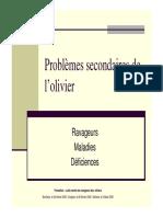 olive.pdf
