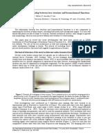 4thFSPM04_S6Fourcaud_a.pdf