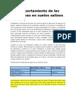 comportamiento de las musaceas en suelos salinos