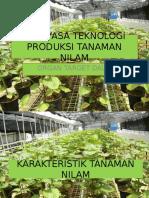 Rekayasa Teknologi Produksi Tanaman Nilam