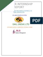 44274384 Budgetry Control GAIL 1-07-2010 Neeraj Final