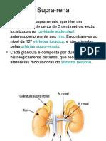 Hiperplasia Da Supra Renal
