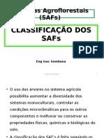 Classificação Dos Safs