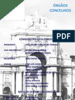 Orgaos Concelhios Lisboa 2010-2012