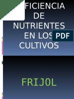 Deficiencia de Nutrientes en Los Cultivos