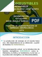 biocombustibles3salimabdala-110923174248-phpapp02