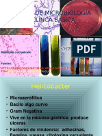 atlas-microbiologia-111121142913-phpapp02.ppt