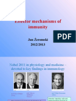 L4-Effector Mechanisms of Immunity