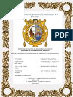 informe final ANÁLISIS.docx