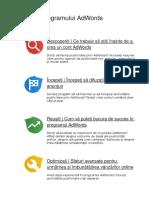 Ghidul programului AdWords.docx
