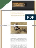 adevaruldespredaci_ro_descoperirea_anului_in_hunedoara_schel.pdf