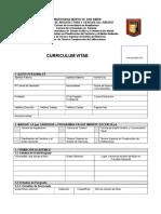 Curriculum Vitae FORMATO