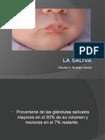 lasalivasem-130219101640-phpapp02