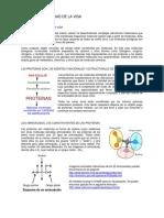 PROTEINAS 1.pdf
