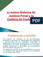 Cadena de Custodia 1