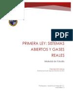 IIQ 1003 Resolución ME Gas Real, Primera Ley Sistemas Abierto y Transiente VMG (1)
