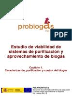 Sistemas de Purificacion de Biogas