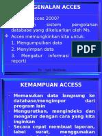 MS Access With Apik S