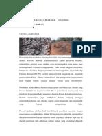 186447605-Makalah-Bijih-Besi.pdf