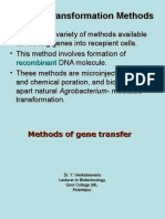 3 Plant Transformation Methods